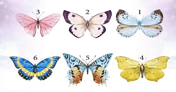قصة الفراشة المغرورة، قصة بها حكمة
