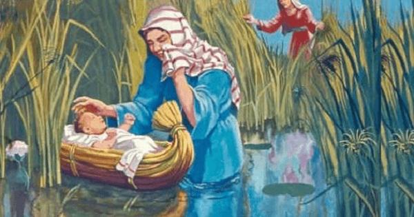 قصة سيدنا موسى عليه السلام والخضر كاملة