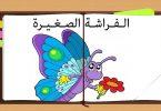 الفراشة الصغيرة