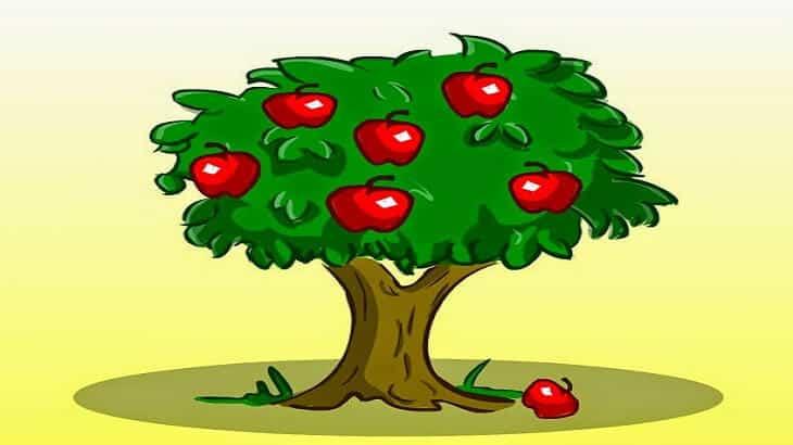 التفاحة الأنانية