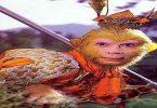 قصة أسطورة الملك القرد والمخاطر التي تعرض لها