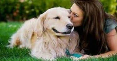 داليا وكلبها الوفي